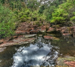 Croajingolong National Park. VIC, Australia