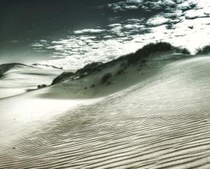 Croajingolong Sand Dunes, VIC, Australia