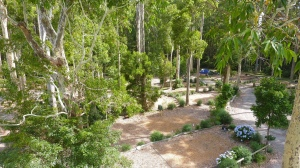Durras Lake North campsite, NSW, Australia