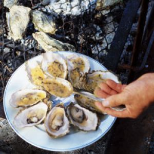 grilled oysters with butter sauce