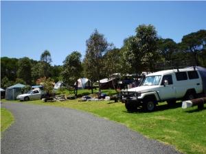 Killalea Beach Campground. Photo: Killalea State Park.