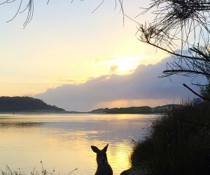 Lake Conjola, NSW, Australia