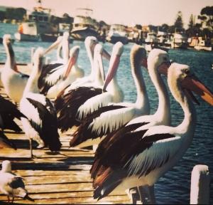 Lakes Entrance, Victoria, Australia