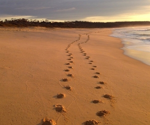 Tura Beach at Merimbula, NSW, Australia