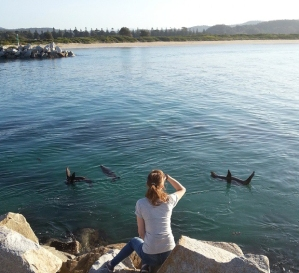 Watching seals. Narooma, NSW. Photo: Nicky_Harding