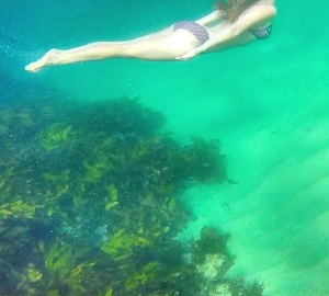 Swimming at Narooma Beach, NSW. Photo: Shobes22