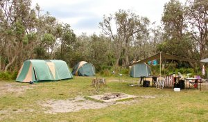 Picnic Point Campground, Mimosa Rocks National Park