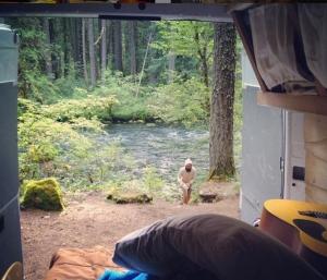 Campervan life