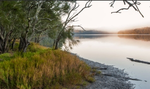 Meroo Lake walking trail. Photo: National Parks and Wildlife NSW.