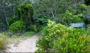 Nuggan Head walking trail. Photo: National Parks and Wildlife NSW.