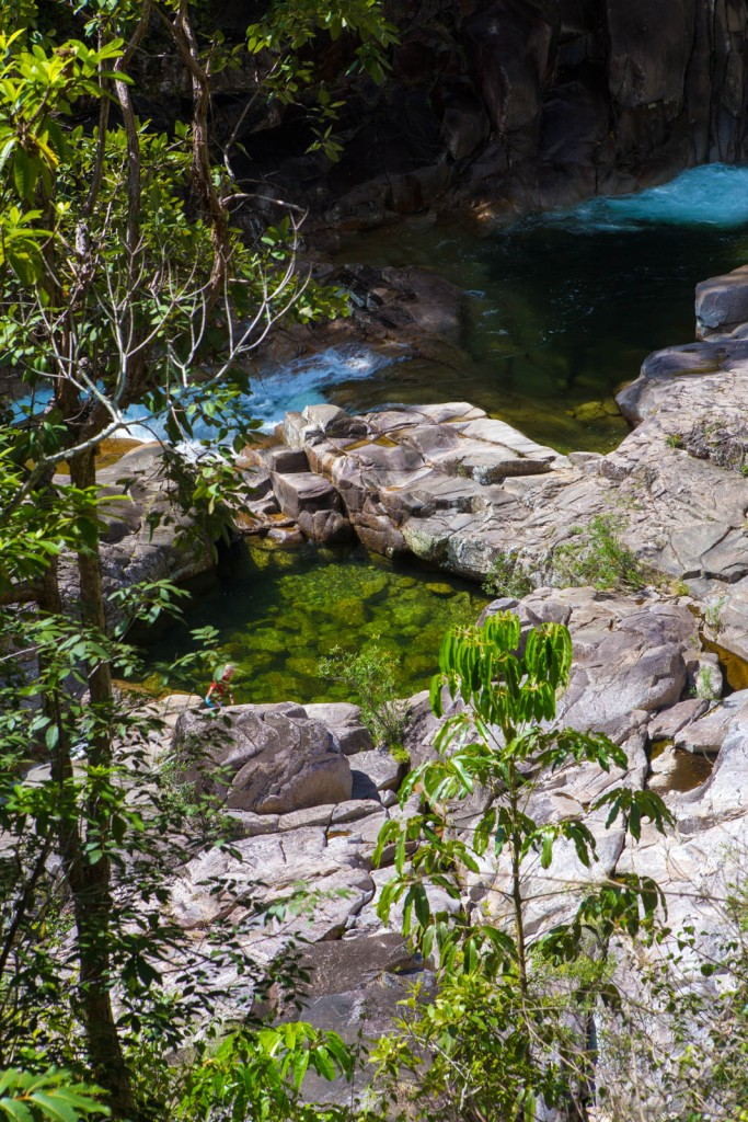 Bedarra Gorge near Cairns, Australia. Photo: Trebla