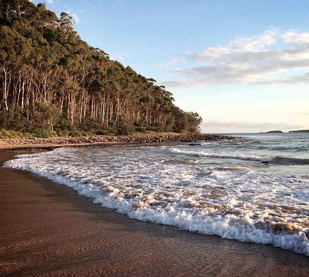 Best beach camping NSW, Australia. Murramarang National Park. Photo: Wallace68