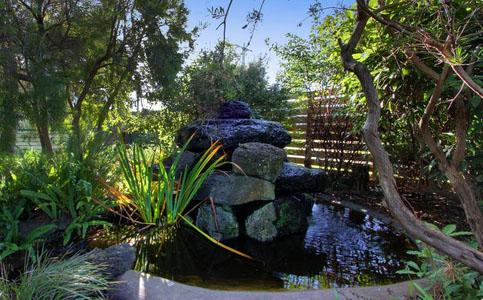 Amaroo Park gardens