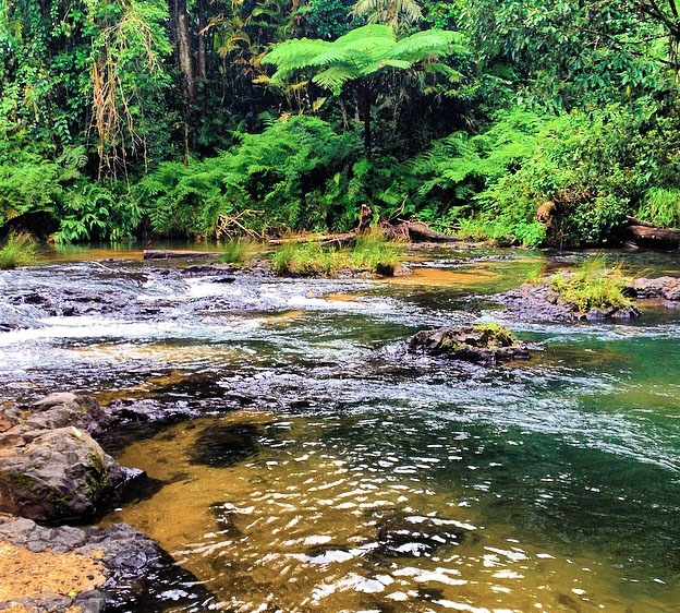 Henrietta Creek. Photo: FiveMileSunrise