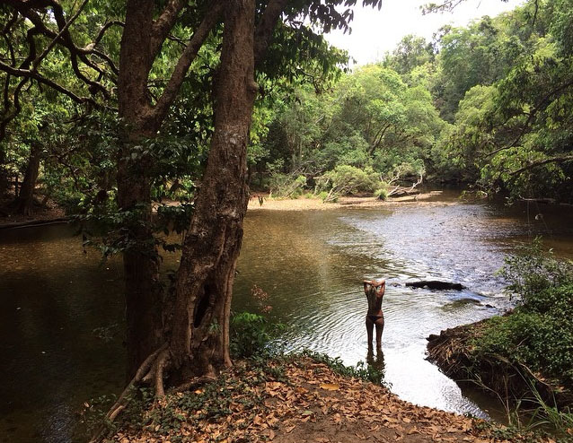 Mulgrave River, Goldsborough Valley near Cairns. Photo: SusannaHoszek