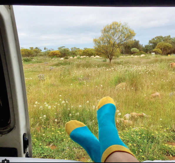 What's my view today? Meadows and daisies. Photo: TheTravelCrumb