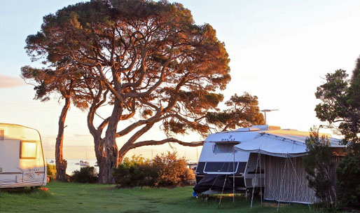 Camerons Bight Camp Ground, Mornington Peninsula. Photo: Whitecliffs.com.au