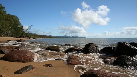 Ella Bay National Park, Queensland, Australia. Photo: News.com.au