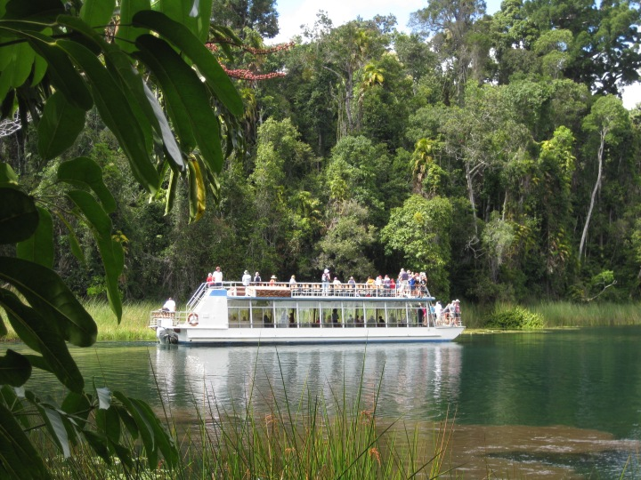 Lake Barrine boat tour, North Queensland, Australia. Photo: TurboPhoto