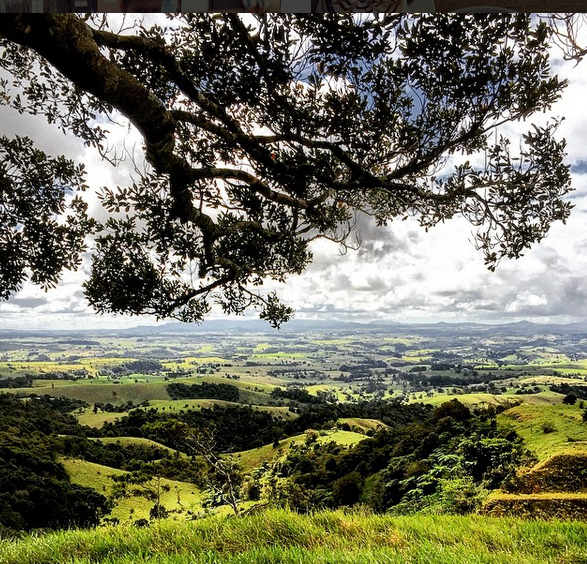 Millaa Millaa Lookout, Queensland, Australia. Photo: LuizaKatian