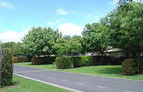 Mornington Gardens Holiday Village hedged sites.