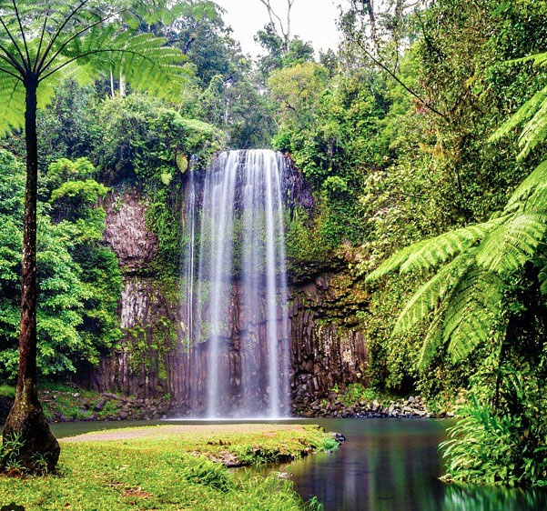 Millaa Millaa Falls, Queensland, Australia. Photo: MyColourfulWorld_