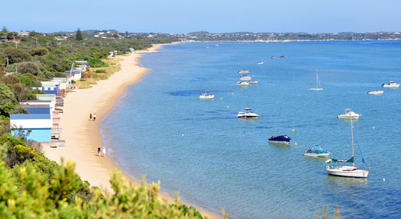 Tyrone Camp Ground on the beach, Mornington Peninsula. Photo: Whitecliffs.com.au