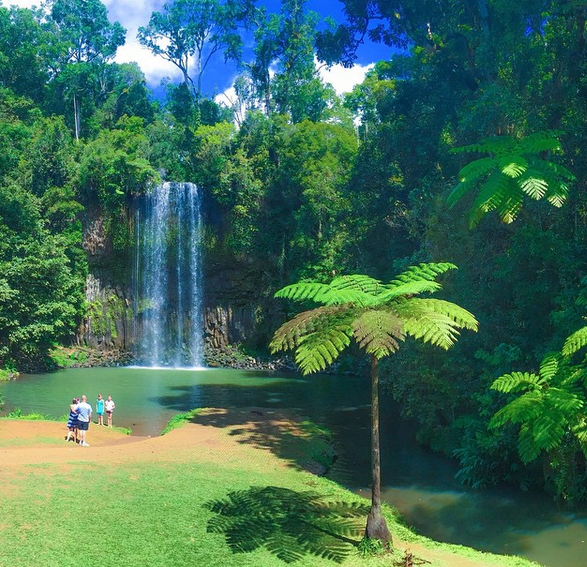 Millaa Millaa Falls, Queensland, Australia. Photo: Viellenist