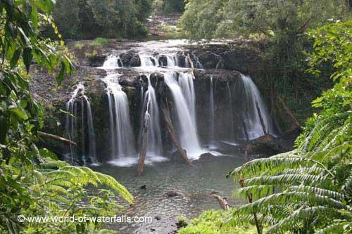 Wallicher Falls, Wooroonooran National Park, Queensland, Australia. Photo: World-of-waterfalls.com