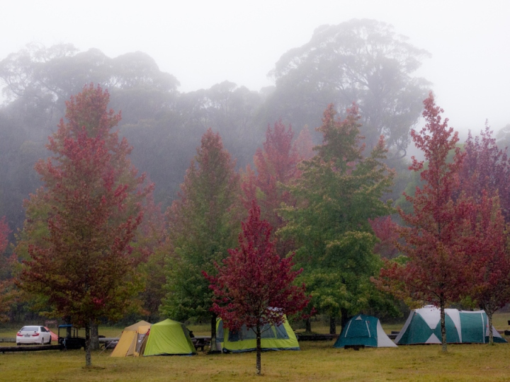 Cathedral Reserve Campground: Free Camping Blue Mountains. Photo: Travis Chau