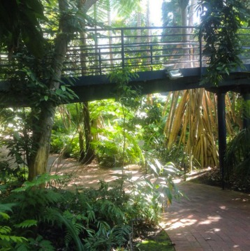 Bicentennial Conservatory. Photo: MishMac77