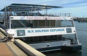 portadelaide_dolphin1