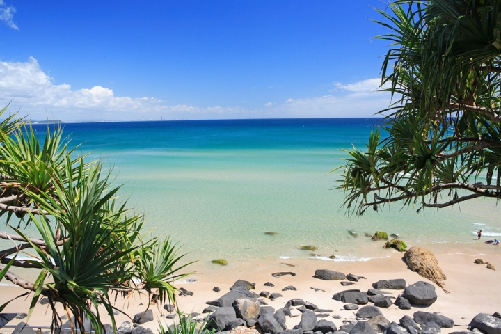 Best Beaches In Coolangatta Tweed Heads Little Green Nomad