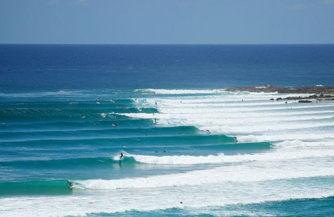 snapper-rocks-surf-prevention