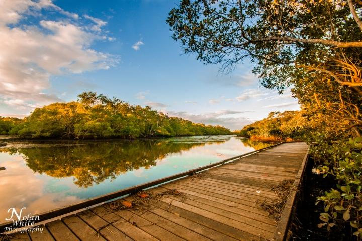 ukerebagh-nature-reserve_nolanWhite