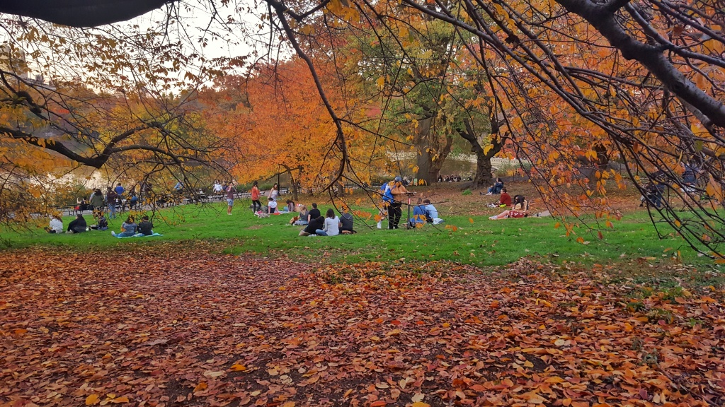 Cherry Hill fall colors Central Park