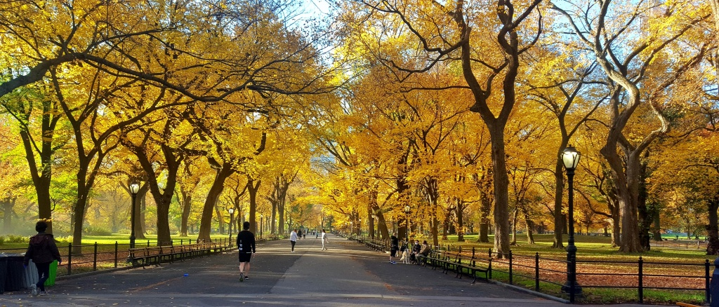 The Mall, fall foliage, Central Park.