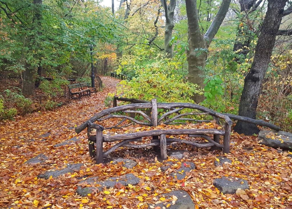 Autumn, The Rambles, Central Park