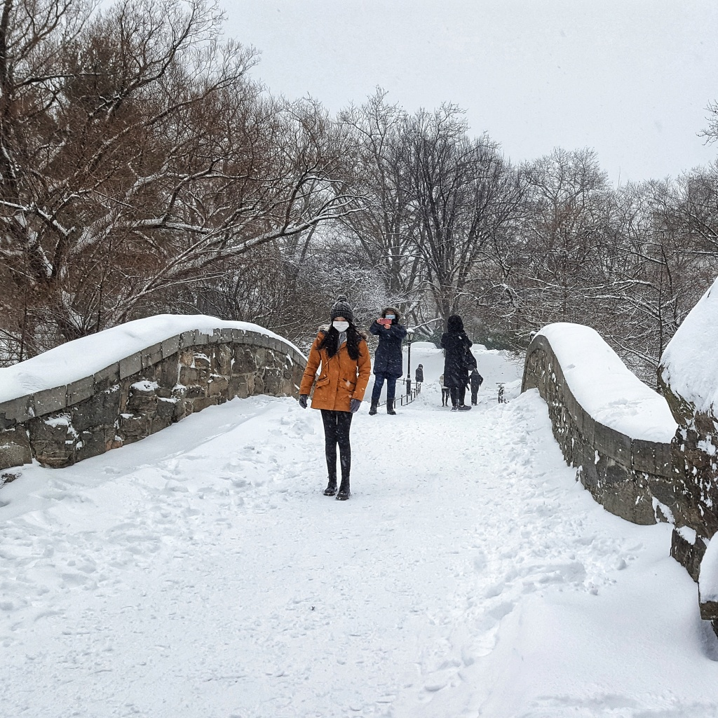 Padstow Bridge in the snow, New York City, Central Park.