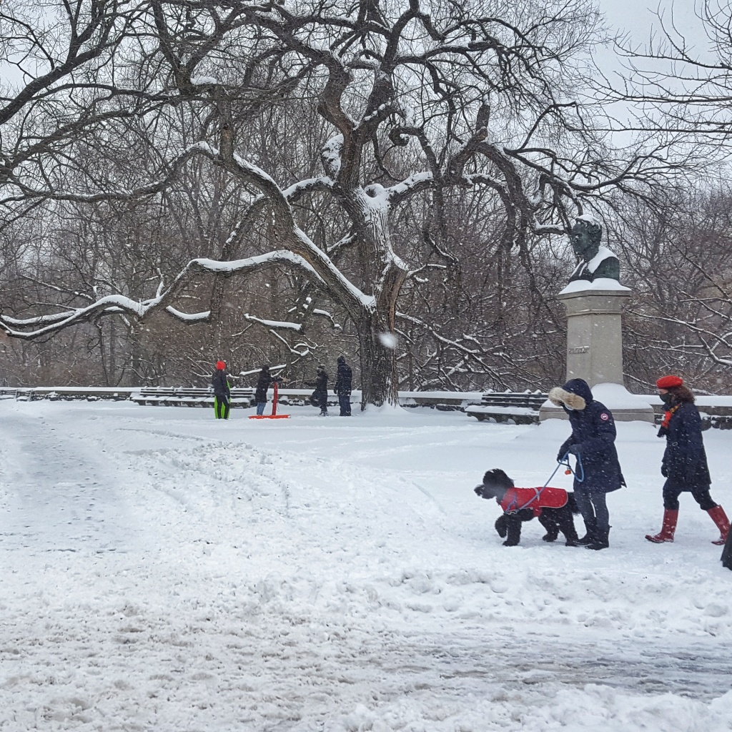 Snow in New York City. Corner of Central Park West Ave and West 77th Street.
